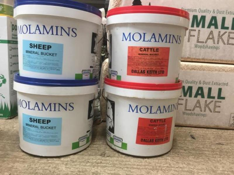Molamins Cattle and Sheep mineral buckets