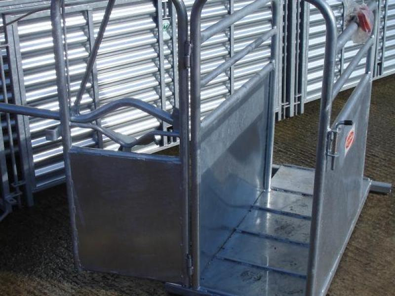 Ritchie Calf Dehorning Crate